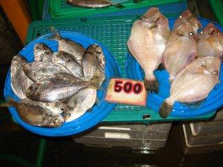 売られている魚