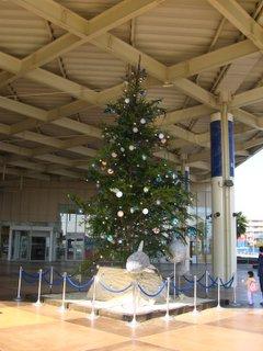 新江ノ島水族館入り口のツリー(昼間)
