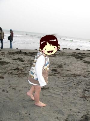 レオ、砂浜を歩く