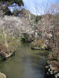 池を囲む景色
