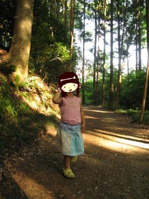 森のような場所