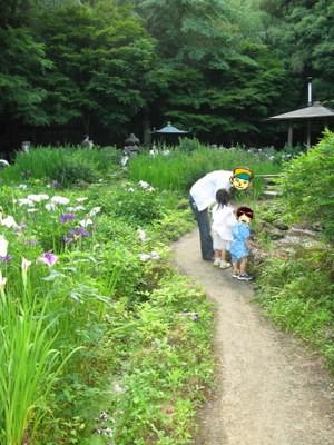 菖蒲園を歩く