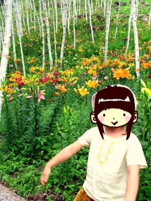 白樺ゆり園にて