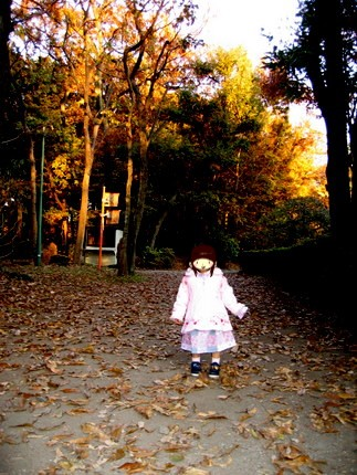 小金井公園をお散歩