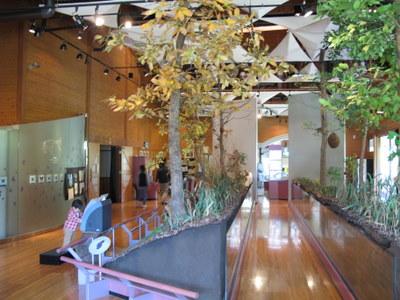 雑木林の四季 の展示コーナー