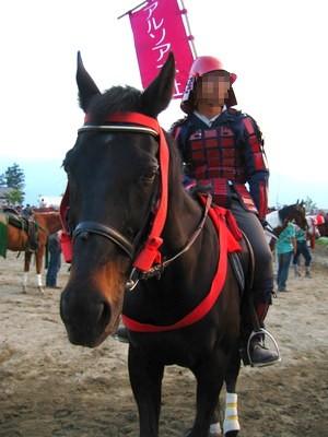 スタンバイ中のお馬さん