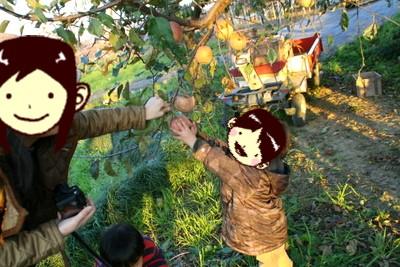 レオのりんご狩り