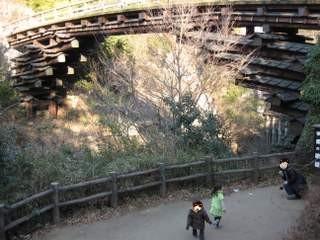猿橋の展望台を目指す