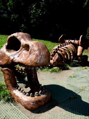 恐竜の骨!?