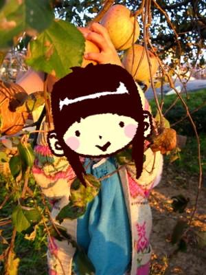 アンもりんごを採る