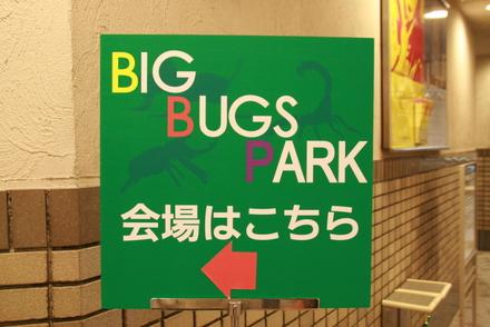 BIG BUGS PARK 会場はこちら