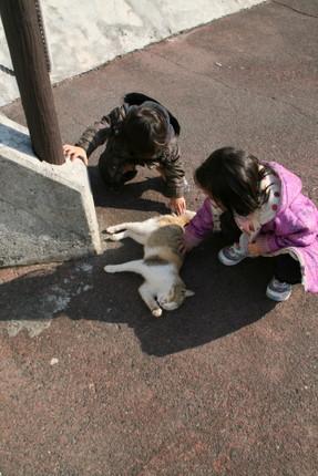 猫を撫でる子ども達