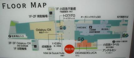 成城コルティのフロアマップ1F