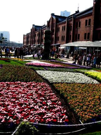 横浜赤レンガ倉庫前広場の巨大花壇
