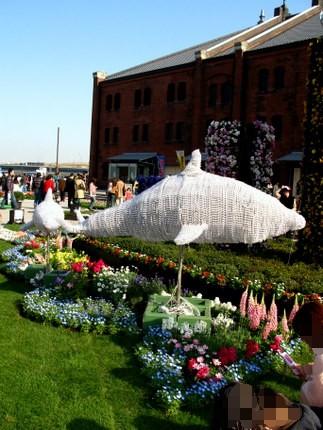 イルカと花壇