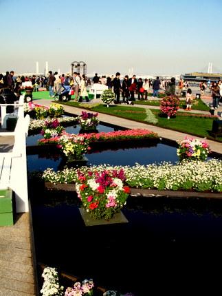 水と巨大花壇