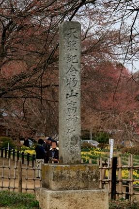 碑「山高神代桜」