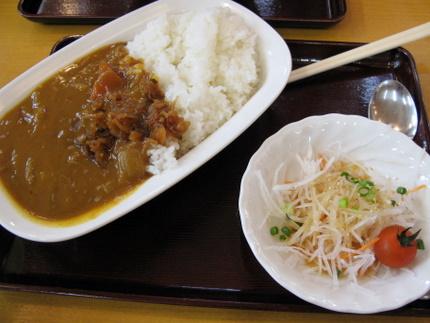 カレー(サラダ付き)