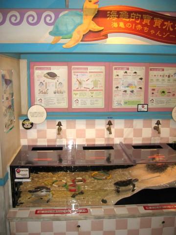 赤ちゃん水族館の手洗い水槽