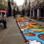 リゾナーレ 花の絨毯