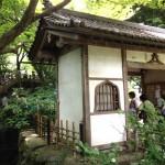 鎌倉あじさい、明月院