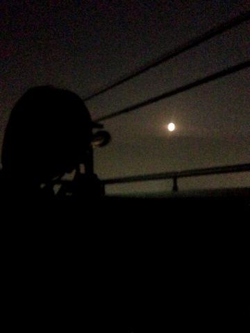 お月見しました